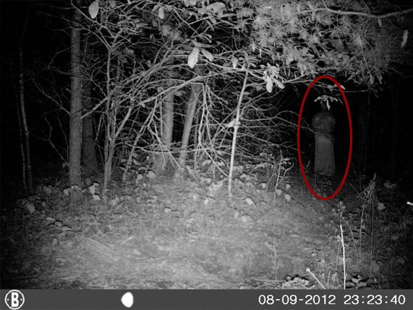 ghost-woods-3